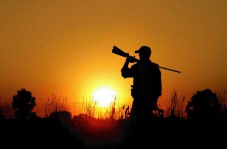 Preapertura della caccia in Abruzzo, per il WWF è un danno per la fauna selvatica