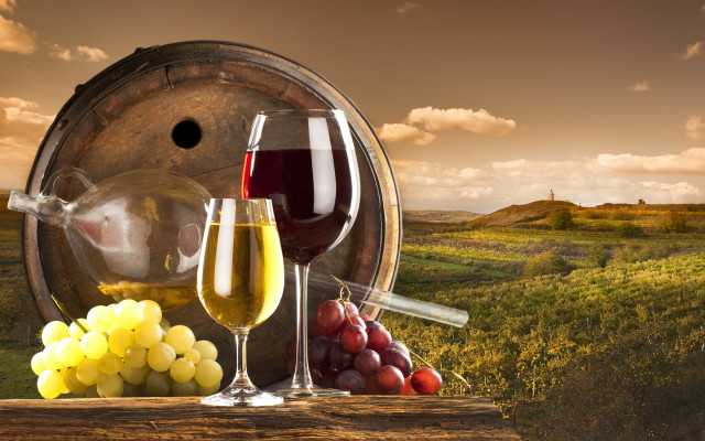 Vinitaly, dopo il Covid l'Abruzzo riparte dai vitigni autoctoni. Record storico del fatturato vino