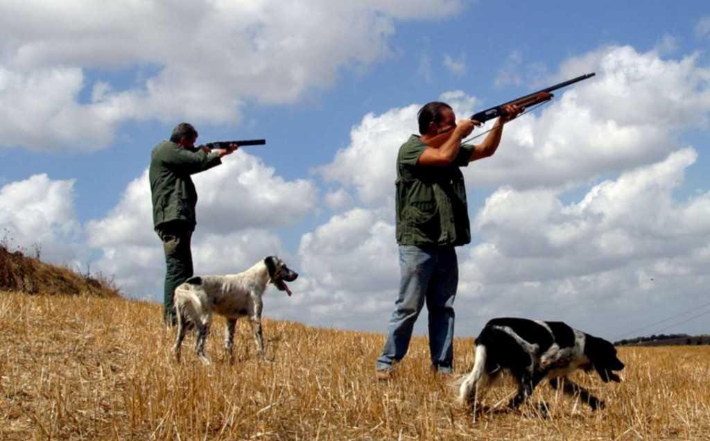 Caccia in terreni privati, SOA patrocina ricorso al TAR contro la Regione Abruzzo