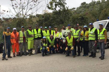 FOTO   Giornata ecologica a Castellalto: i volontari hanno raccolto 60 sacchi di rifiuti lungo la Sp 19