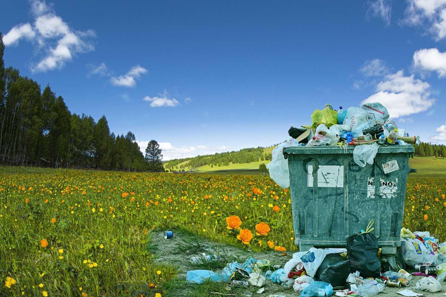 Plastic free certification, primo marchio riconosciuto nasce da start up teramana