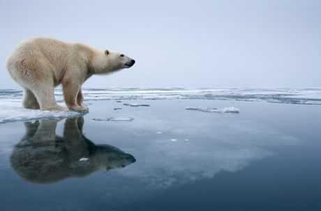 Emergenza climatica, le iniziative de Il Cittadino Governante