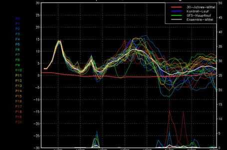 Meteo pazzo, l'inverno mai arrivato: nei prossimi giorni temperature sopra i 20 gradi