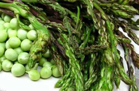 Clima, natura in tilt ed arrivano fave ed asparagi: raccolti sconvolti