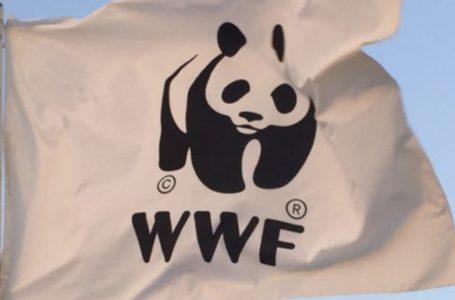Teramo, WWF: viva il circo… senza gli animali!