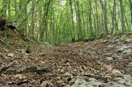 Parte, in modalità unsupported, l'Abruzzo Trail MAGS Experience 2020