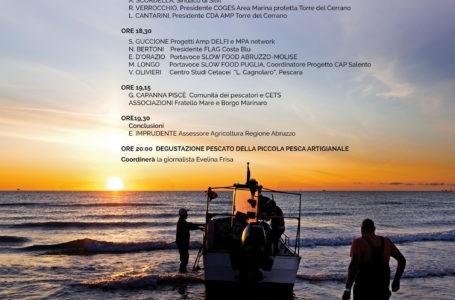 Silvi, l'importanza della pesca artigianale del Cerrano e la tutela dei delfini. Convegno il 13 luglio