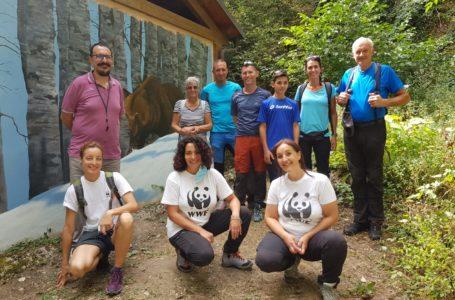 """Aveva """"incontrato"""" un orso in Trentino, il WWF lo invita in abruzzo per un ideale gemellaggio"""