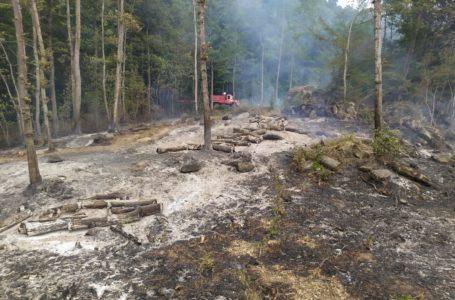 Montorio, a fuoco due ettari di faggeta ad Altavilla: indagano carabinieri forestali