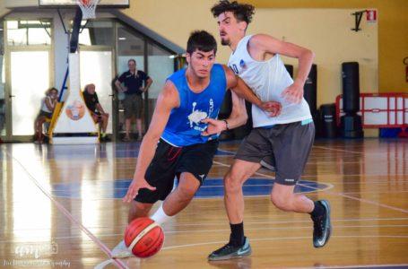 Basket B, il Tasp ingaggia Andrea Bianchi ala e figlio d'arte (ricordate l'ex biancorosso Pietro?)