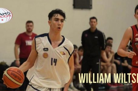 Basket B, il Tasp ingaggia l'esterno 19enne William Wiltshire