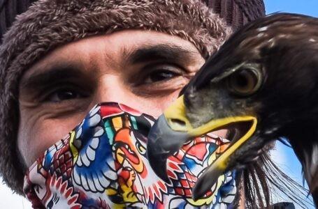 Il falconiere abruzzese Granati nominato vicepresidente e membro Comitato scientifico di L'Altritalia Ambiente