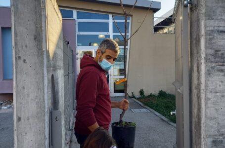 Festa dell'albero, Alba Adriatica: genitori e docenti insieme per l'ambiente nella sez. della scuola d'infanzia in via dei Ludi