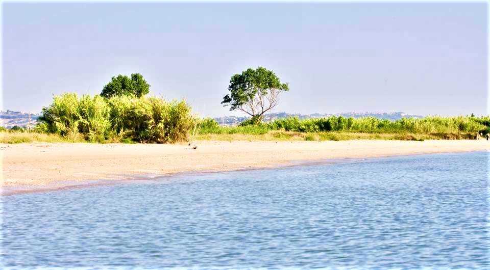 COSA SUCCEDE IN CITTA' / Perché aderisco alla manifestazione per salvare la riserva del Borsacchio