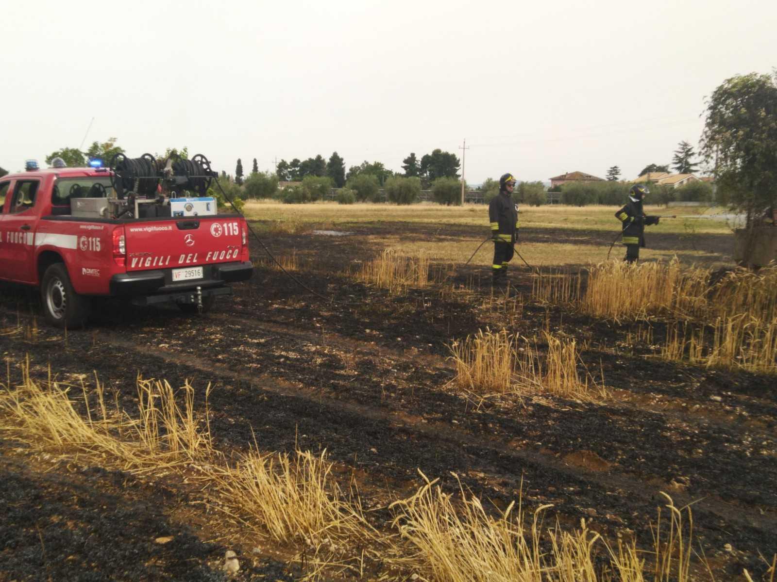 VIDEO e FOTO   Sant'Egidio, resta ustionata in un incendio di sterpaglie: grave una 70enne