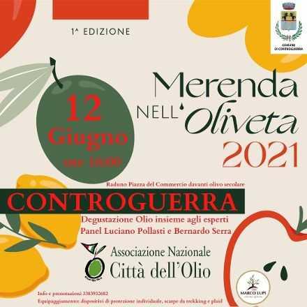 VIDEO | Controguerra, Merenda nell'oliveta: il 12 giugno l'iniziativa dell'assessorato alla Città dell'Olio