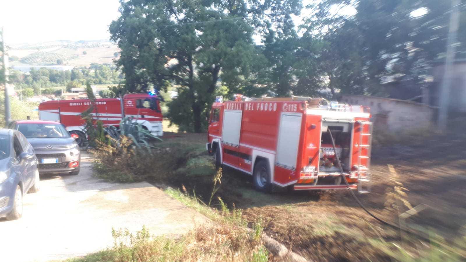 FOTO   Bellante, incendio di sterpaglie e ulivi nei pressi di Villa Ardente