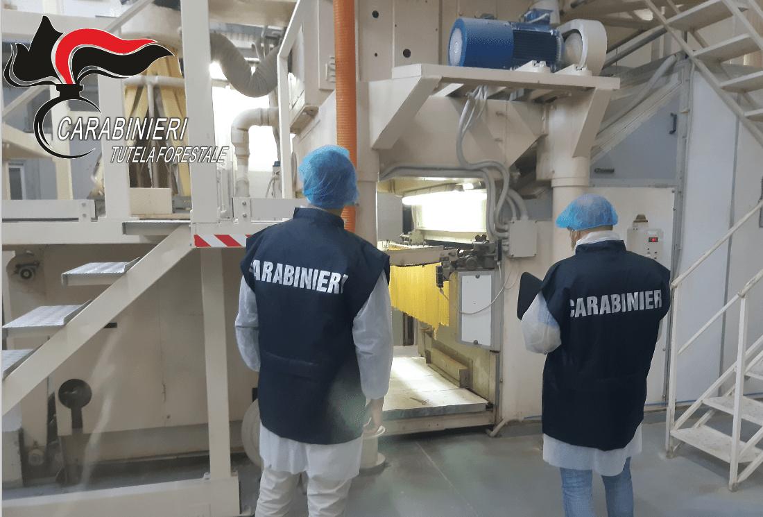 Carabinieri Forestali, sanzioni in 9 pastifici per infrazioni sull'etichettatura tra Abruzzo e Molise