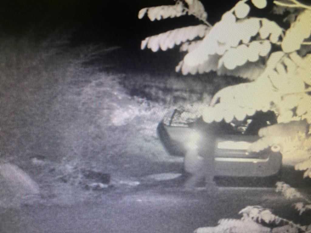 Abbandono dei rifiuti a Teramo: le fototrappole individuano due trasgressori