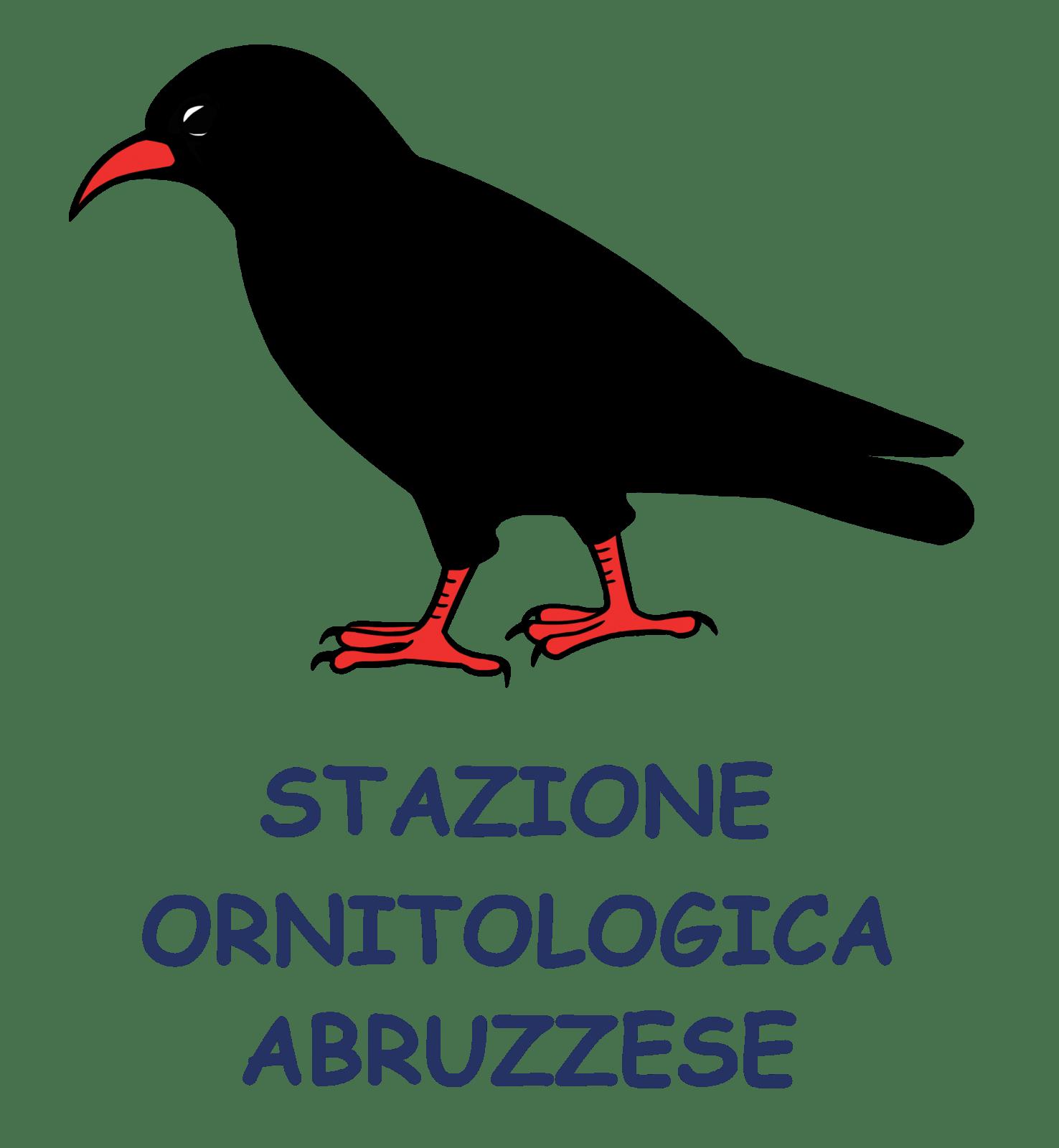 Stazione Ornitologica Abruzzese: esposti annosi a tutela dell'Orso senza risposte